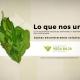 Consorcio-Vega-Baja-Sostenible-Ecosilvo